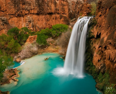 Landscape Photo of Havasu waterfall in Arizona by Jay Patel