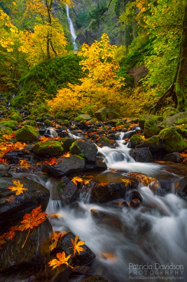 Autumn waterfall photography example from Starvation Creek, Oregon