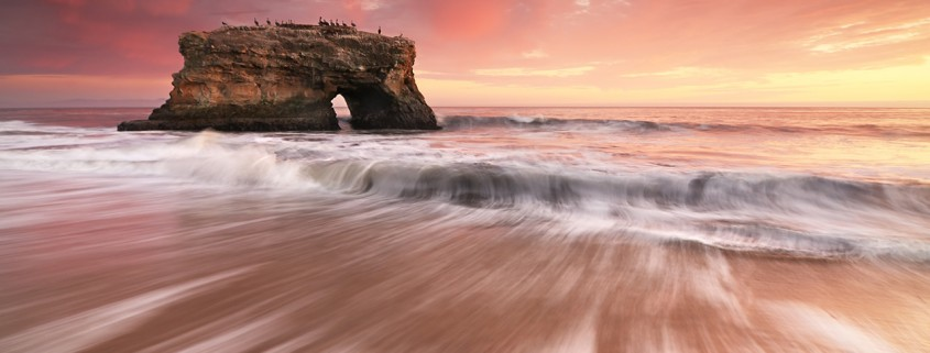natural-bridges-state-beach-santa-cruz