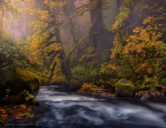 Autumn Landscape Photography by Candace Dyar