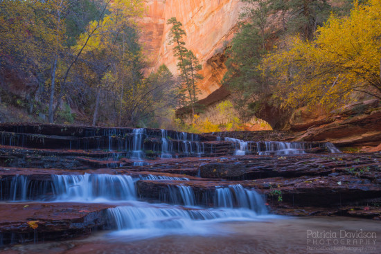 Photographed during the hike through the Subway at Zion National Park, UT.