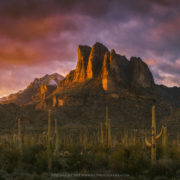 A sea of Saguaro cacti sit below peaks in the Superstition Mountains.